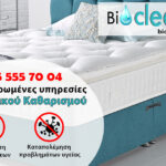 bio clean up flyer